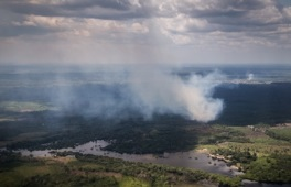 Forest burning near Manaus, Brazil, adds aerosols to the atmosphere that can delay or decrease precipitation because available moisture is spread over a greater number of seeds that must collide and coalesce to form rain drops.